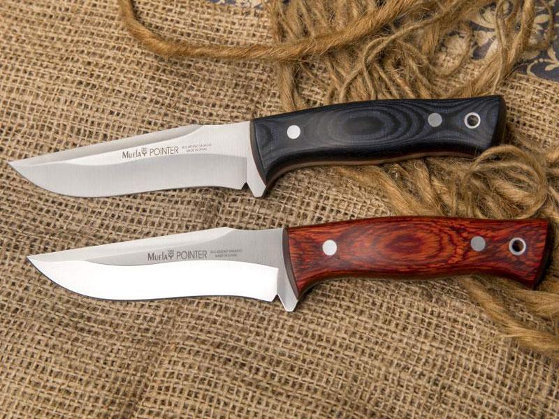 Cuchillo Muela Pointer 12